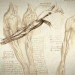 Leonardo da Vinci: su Tratado de la Pintura